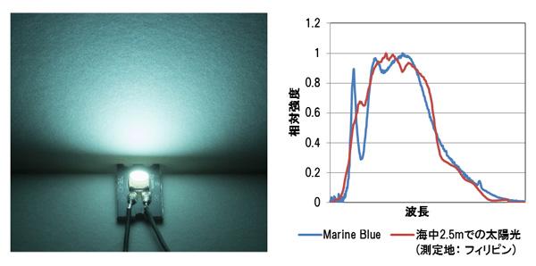 マリンブルー(Marin Blue)の特徴