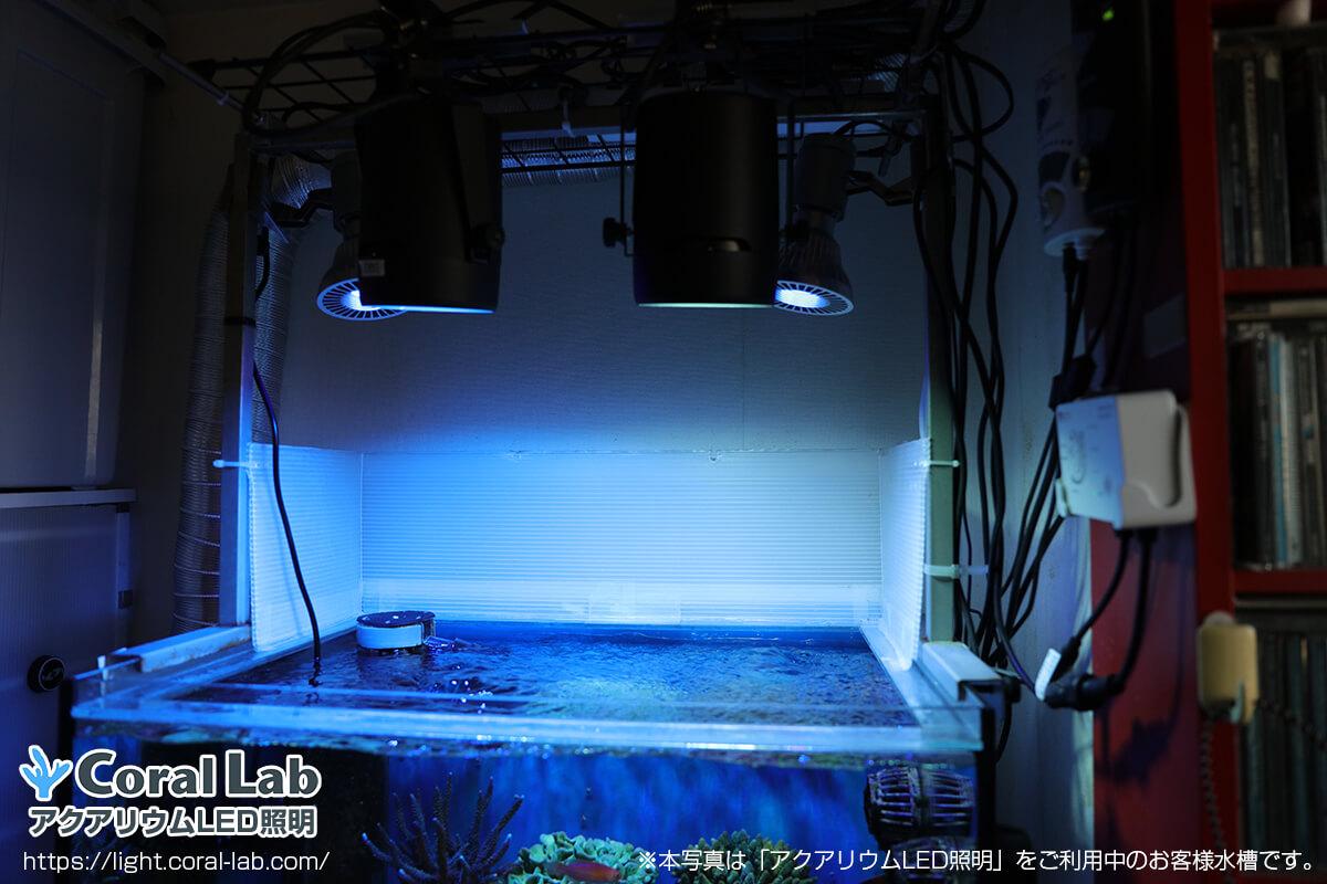 アクアリウムLED照明を利用している水槽のタンクデータ【東京都星野様】